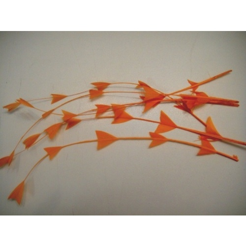 Coque/Arrow Cut - Orange