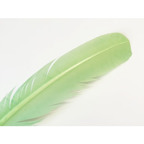 Wing Feather - Mint